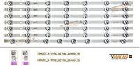 VESTEL - 49DLED_A-TYPE_REV00, 49DLED_B-TYPE_REV00, 30085094, 30085095, 23304421, VES490UNDL-2D-N01